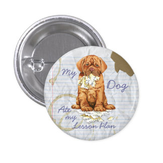 My Dogue de Bordeaux Ate My Lesson Plan Pinback Button