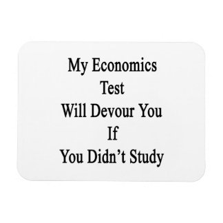 My Economics Test Will Devour You If You Didn't St Vinyl Magnets