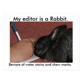 My editor is a Rabbit. Postcards