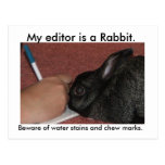 My editor is a Rabbit. Postcards