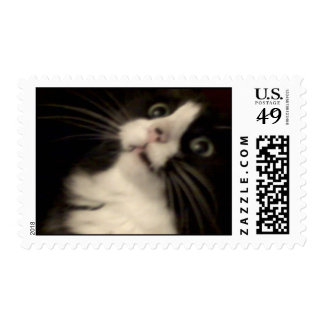 My Einstein Stamp