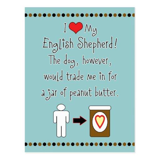 My English Shepherd Loves Peanut Butter Postcards