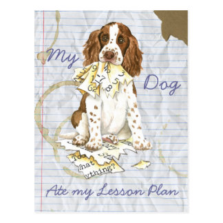 My English Springer Spaniel Ate My Lesson Plan Post Cards
