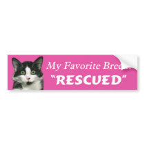 My Favorite Breed Cat Bumper Sticker