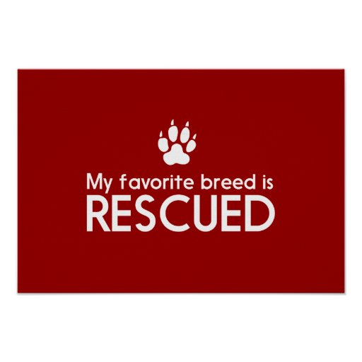 My Favorite Breed is Rescued Posters