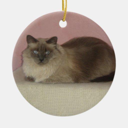 My favorite cat photo christmas tree ornament