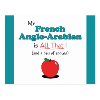 My French Anglo-Arabian is All That! Funny Horse Postcard