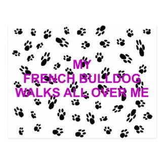 my french bulldog walks all over me postcard