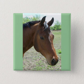 My Friend, The Horse Button