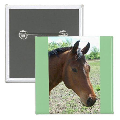 My Friend, The Horse Pins