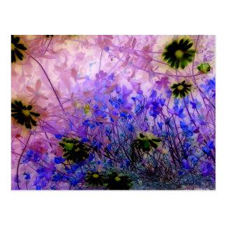 my garden 3 post card