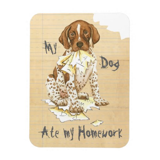 My German Shorthaired Pointer Ate My Homework Magnets