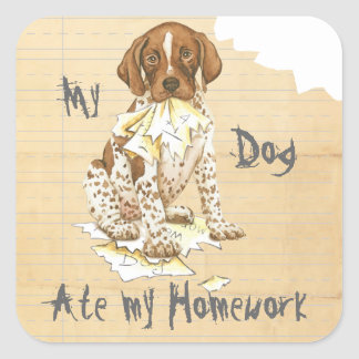 My German Shorthaired Pointer Ate My Homework Square Sticker