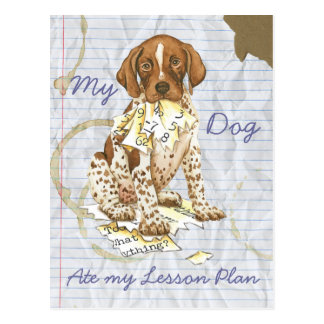 My German Shorthhaired Pointer Ate My Lesson Plan Post Cards