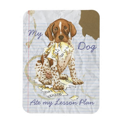 My German Shorthhaired Pointer Ate My Lesson Plan Rectangular Magnet
