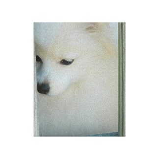 My Girl ~ White Pom Puppy Wrapped Canvas Print