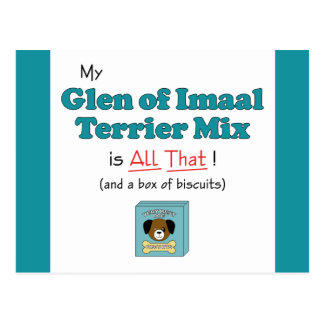 My Glen of Imaal Terrier Mix is All That! Postcard