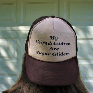 My Grandchildren Are Sugar Gliders Mesh Hats
