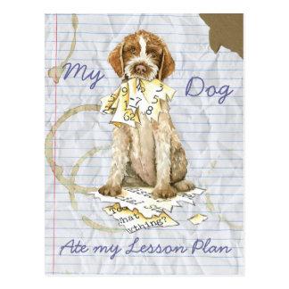 My Griffon Ate My Lesson Plan Postcard