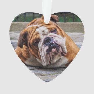My Grumpy Dog is Saying Bulldog ! Ornament