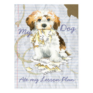 My Havanese Ate My Lesson Plan Postcard