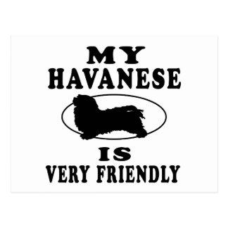 My Havanese is very friendly Postcard
