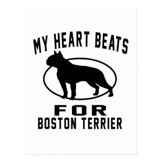My Heart Beats For Boston Terrier. Postcard