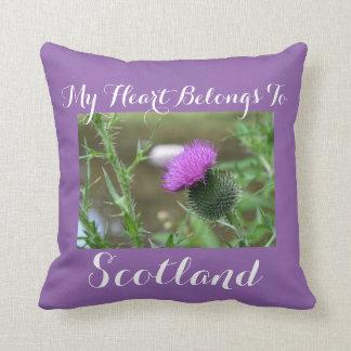 """My heart belongs to Scotland"" Thistle Pillow"