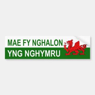 My Heart Is In Wales Bumper Sticker