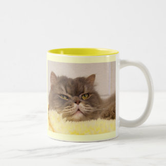 My Heart is sold on my SCOTTISH FOLD Two-Tone Coffee Mug