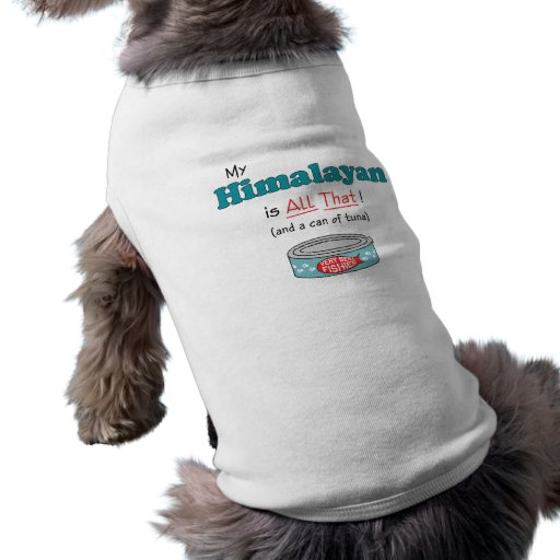 My Himalayan is All That! Funny Kitty Dog Shirt