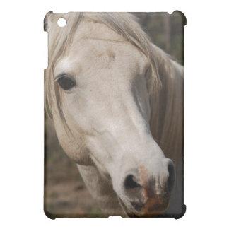 My horse face case for the iPad mini