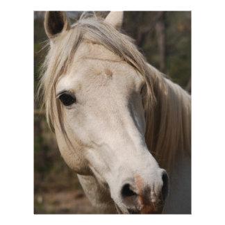 My horse face letterhead