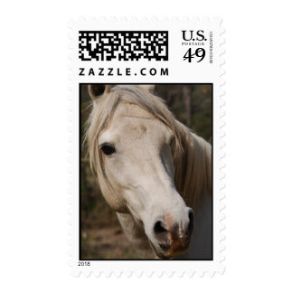 My horse face postage