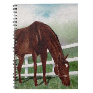 My Horse Notebook