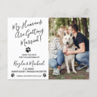 My Humans Are Getting Married Dog Wedding Announcement Postcard
