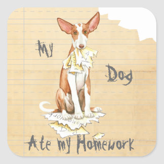 My Ibizan Hound Ate My Homework Square Sticker