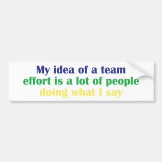 My Idea of a Team Effort... Bumper Sticker