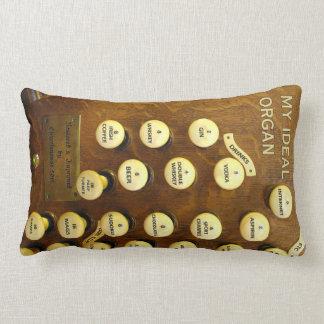 My ideal organ lumbar pillow