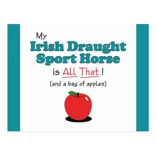 My Irish Draught Sport Horse is All That! Postcard