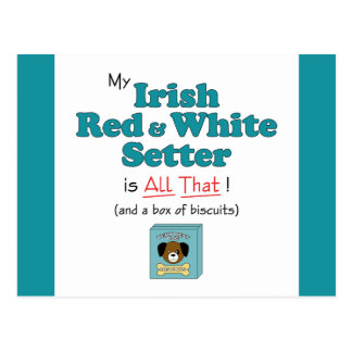 My Irish Red and White Setter is All That! Postcard