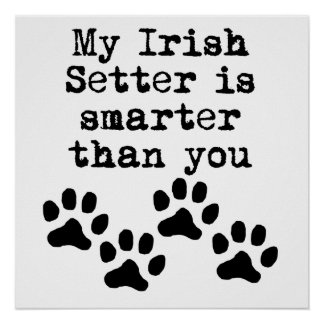 My Irish Setter Is Smarter Than You Posters
