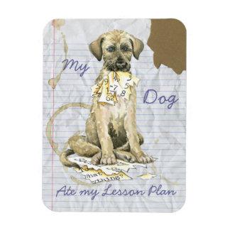 My Irish Wolfhound Ate My Lesson Plan Rectangular Photo Magnet