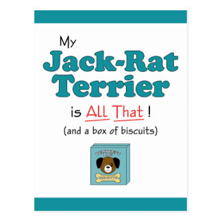 My Jack-Rat Terrier is All That! Postcard
