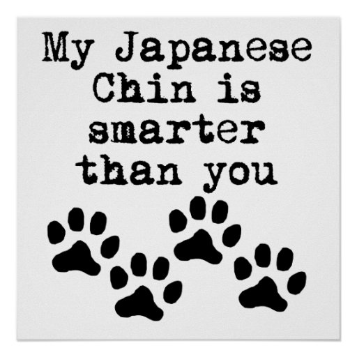 My Japanese Chin Is Smarter Than You Poster