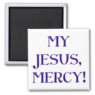 My Jesus, Mercy! Magnet