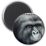 My Jimmies Remain Unrustled Magnet