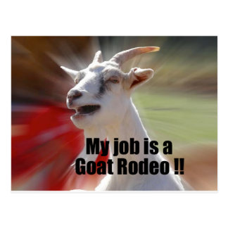 My Job is a Goat Rodeo Goat Photography Postcard