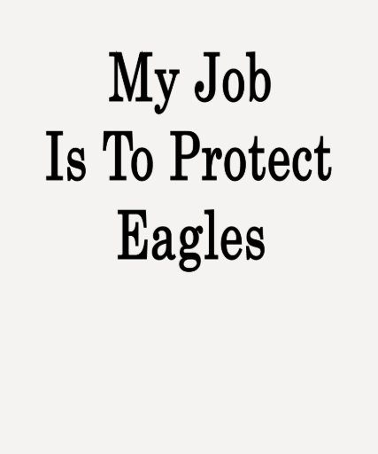 My Job Is To Protect Eagles Tees