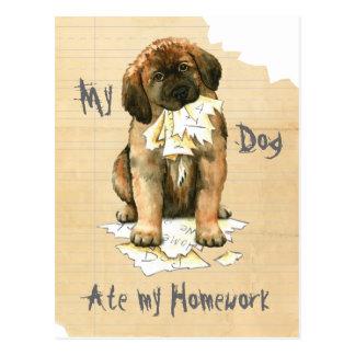 My Leonberger Ate My Homework Postcard